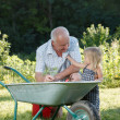 Child is helping her Grandfather — Stock Photo #32796303