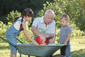 Children is helping her Grandfather in the garden — Stock Photo
