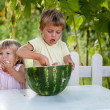 Stock Photo: Happy boy and little girl with watermelon lying