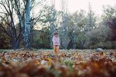Yaprakları savurma yaparken eğlenmek çok çocuk — Stok fotoğraf