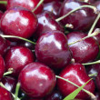 Cherries — Stock Photo #14497203