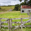 Farm, Coromandel Peninsular, NZ — Stock Photo