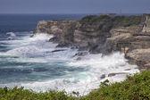 New South Wales Coastline near Sydney — Stock Photo