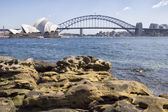 Sydney Harbour Bridge and Opera House from the Botanical Gardens — Stock Photo