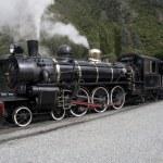Steam locomotive - 2 — Stock Photo #26223335