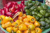 Basket of red, yellow and green capsicums — Stock Photo