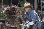 Mulher vendendo ervas — Fotografia Stock