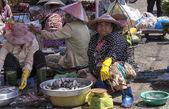 Women selling fish — Stockfoto