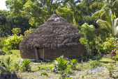Primitive hut — Stock Photo