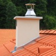 Roof and chimney — Stock Photo #12785962
