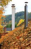 屋根の上の葉 — ストック写真