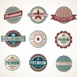 Set of Vintage Premium labels — Stock Vector #13311228
