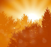 Sunrise scene — Stock Vector