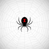 Spider on web — Stock Vector
