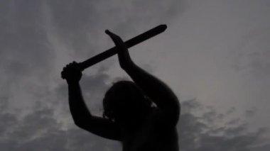 Warrior — Stock Video