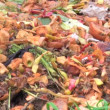 Stock Video: Food waste and insects