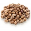 Borlotti beans — Stock Photo