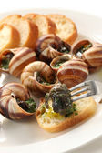 Escargot, snails a la bourguignonne — Stock Photo