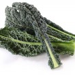 Royalty-Free Stock Photo: Black kale, italian kale