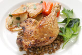 Confit de canard, duck confit — Stock Photo