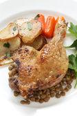 Confit de canard, duck confit — Stock Photo
