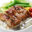 Teriyaki chicken on rice — Stock Photo