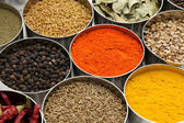 Indian spices collection — Foto Stock