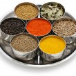 Indian spices collection — Stock Photo #29090111