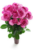 Růže Yvese Piageta — Stock fotografie