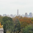Central Park, N.Y. — Stock Photo #15850105