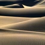 Sand dunes — Stock Photo #23962785