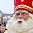 Close up of Sinterklaas — Stock Photo #34482283