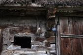 Old house from country side - Detail — Foto Stock
