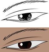 Slanted Eye Close Up — Stock Vector