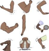 Various Human Elbows — Stock Vector