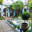 Typical andalusian patio in Cordoba, Andalusia, Spain. — Stock Photo #50955963
