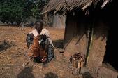 BEDIKS - Senegal — Stock Photo