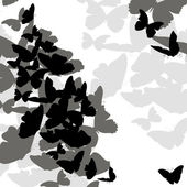 Seamless patterns and cards with butterflies — Stock Photo