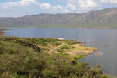 Point of view of the bogoria lake national park — Stock Photo