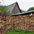 Rural stack of firewood — Stock Photo