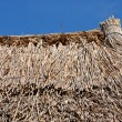Thatched roof detail — Stock Photo