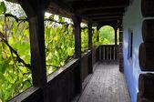 Wooden veranda with grape leaves — Stock Photo