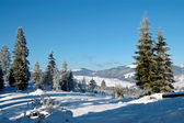 Winter in the mountains — Foto Stock
