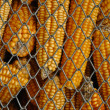 Stock Photo: Corn storage, ideal for background