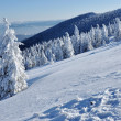Royalty-Free Stock Photo: Beautiful panorama of winter mountains