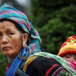 A Black Hmong Vietnamese woman carrying her child, Sapa, Vietnam — Stock Photo
