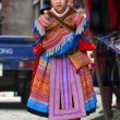 Hmong woman carrying her child in Bac Ha, Vietnam — Stock Photo