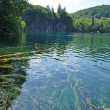 Lake in deep forest, Plitvice, Croatia — Stock Photo
