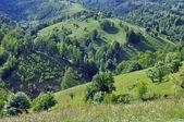 Beautiful green, vibrant mountains — Stock Photo