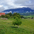 Panoramic view of Bucegi mountains, Romania — Stock Photo